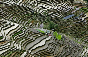 watermark-rice terraces-china