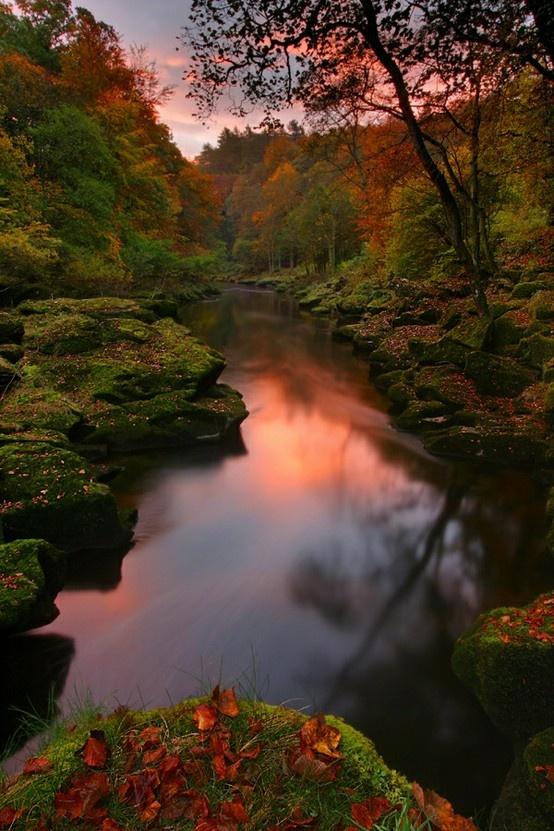 sunset-rose-river