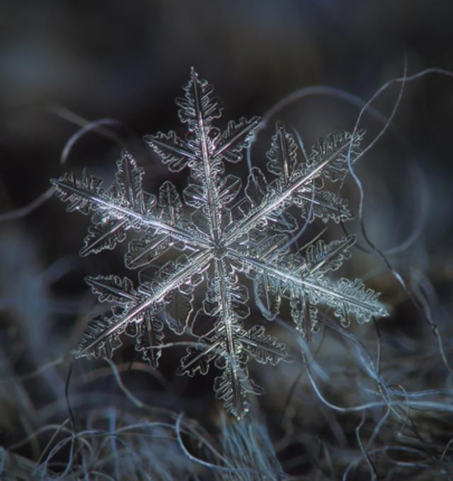 snowflake-alexey kljatov-14