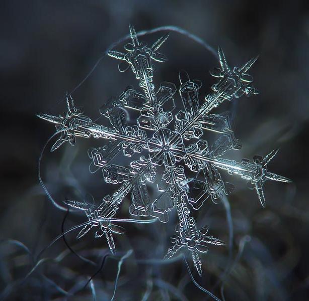 snowflake-alexey kljatov03