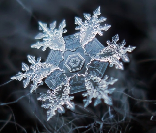 snowflake-alexey kljatov07