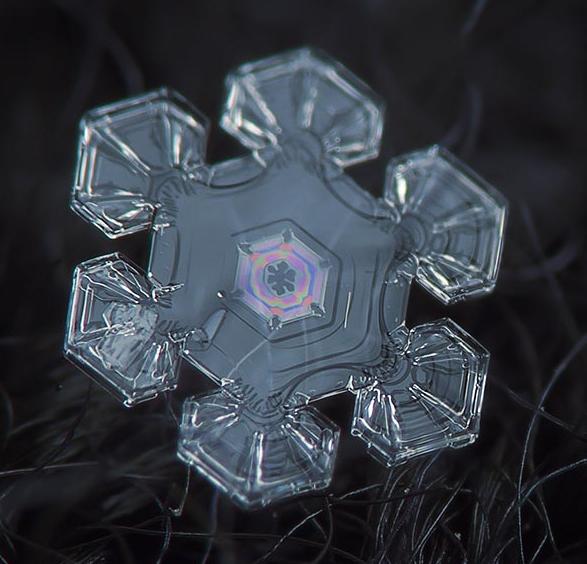snowflake-alexey kljatov08