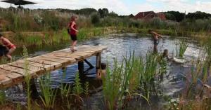 natural-swimming-pool-3