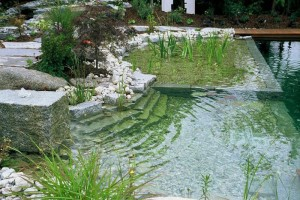 Stoned-Theme-Natural-Swimming-Pool-700x468