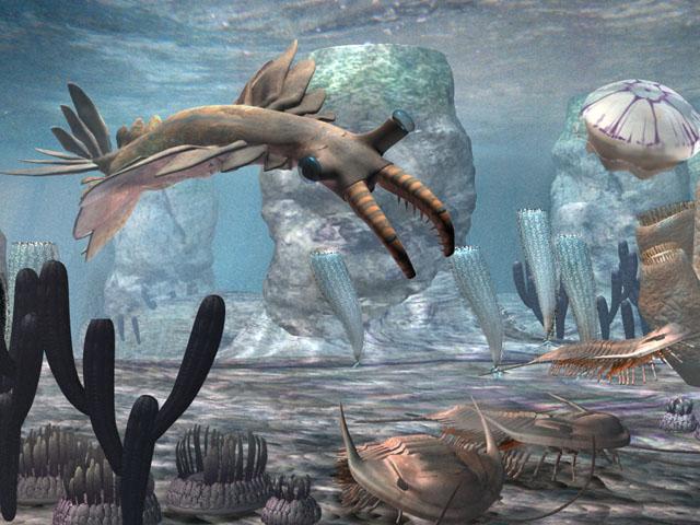 anomolacaris-trilobite