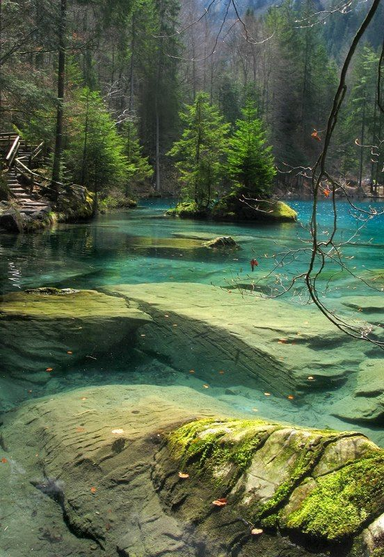 Bernese Oberland, bern