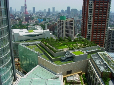 green roof city