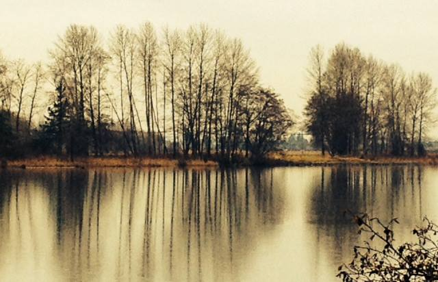 mirrored water Deas Park