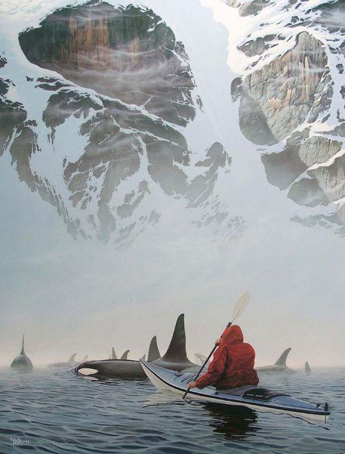 orca san juan