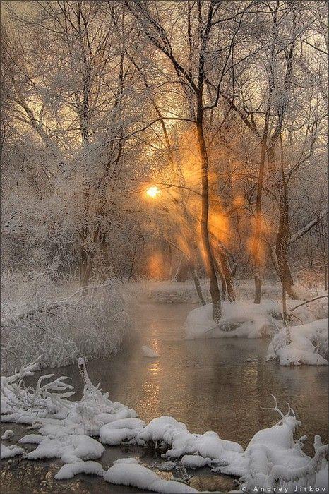 winter stream snow fog