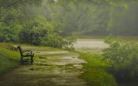 rain-and-park-bench