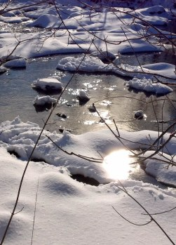 winter-mimico-gleam