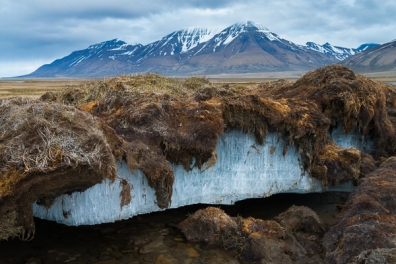 permafrost-ecology-climate