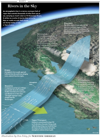 Scientific American - January 2013