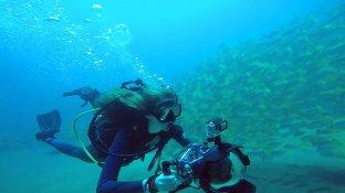 SeaOfLife-JuliaBarnes
