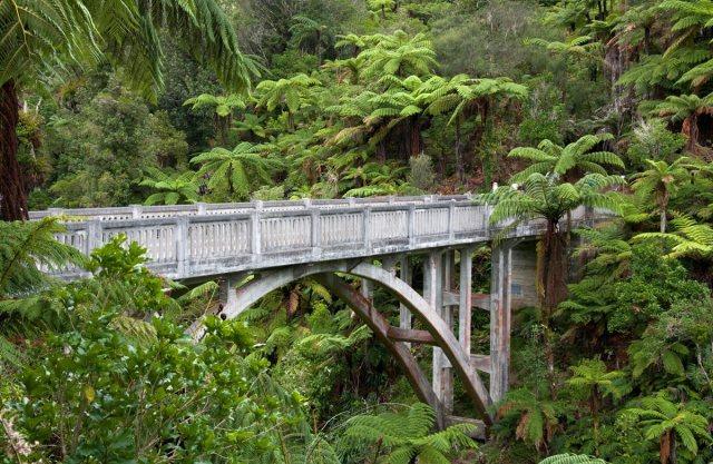 bridge-to-nowhere-WNP