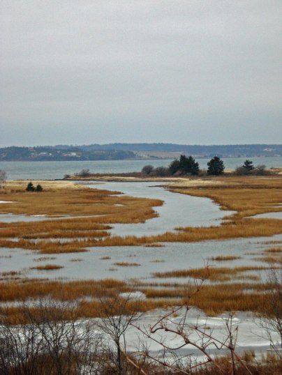 marsh south shore NS