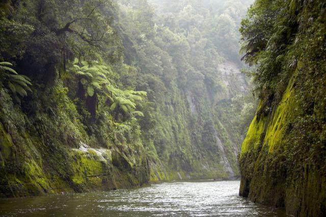 Whanaganui-River-Omakalodge-nz