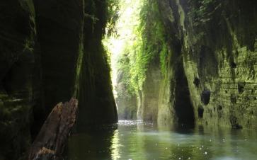 Whanganui-River-Gorge-View