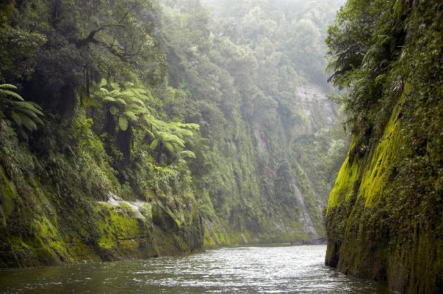 whanganui-river2