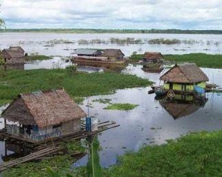 Amazon floodplain