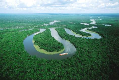 Amazon River winding