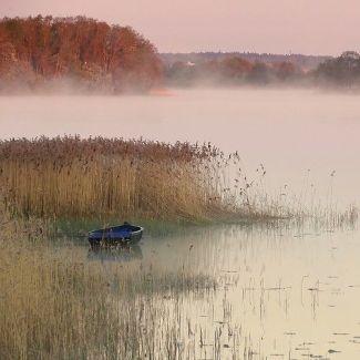 marsh boat