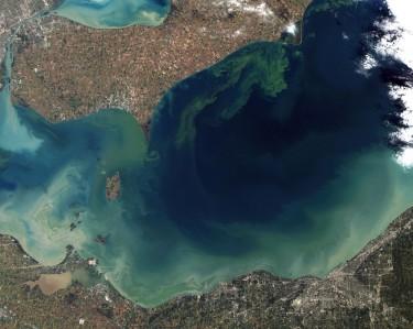toxic algal bloom lake erie