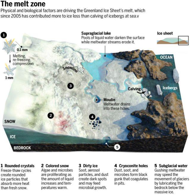 Greenland-meltzone