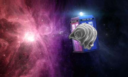 tardigradetardis copy