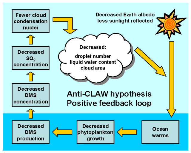 Anti-CLAW Hypothesis