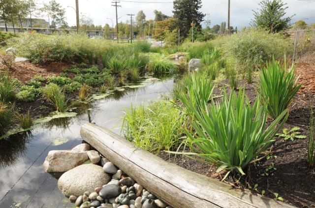 creekway-park Vancouver