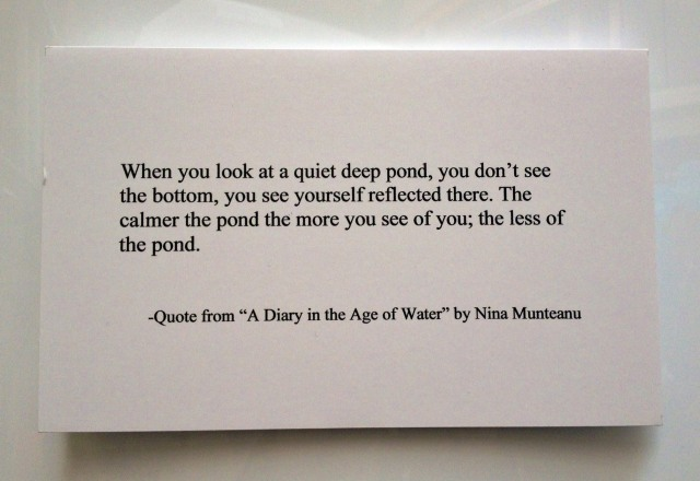 DiaryAgeOfWater-quote