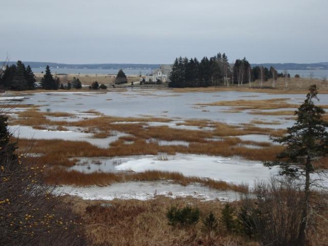 Marsh-nearBlueRocks