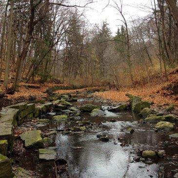 RosedaleRavine-Yellow Creek