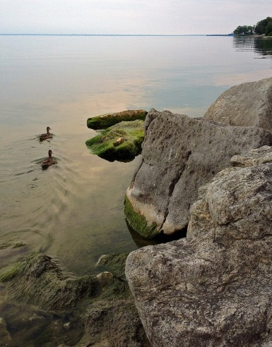LakeOntario-OG04