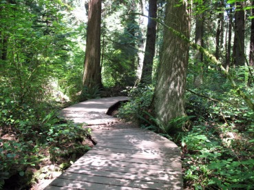 Pacific-Spirit-Park-boardwalk
