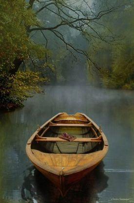 boat stream tree