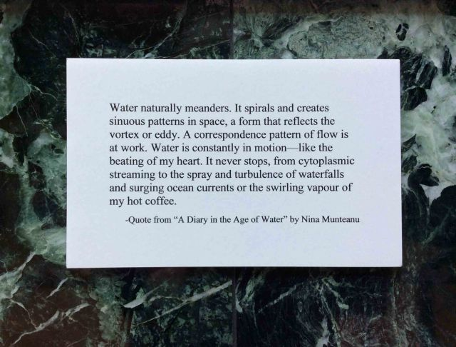 Water meanders-diary