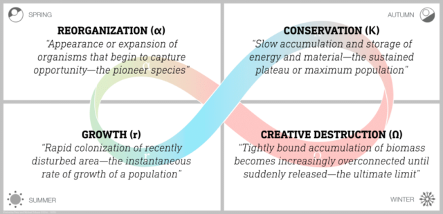 4 steps in Creative Destruction