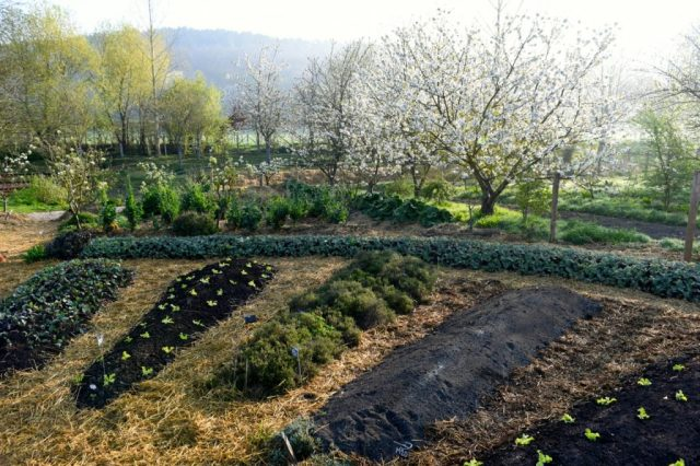 French permaculture