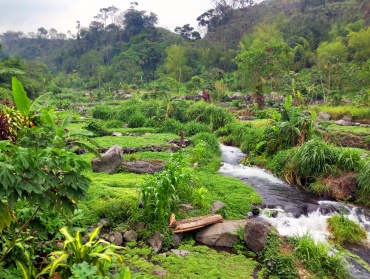 mesoamerican permaculture