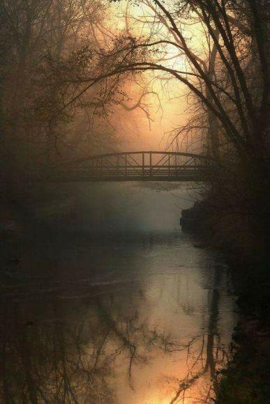 bridge stream sunset copy