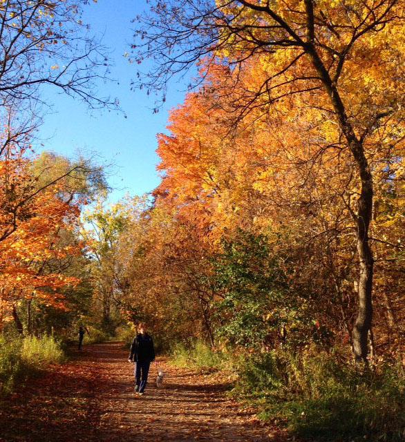 fall-credit river06