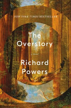 TheOverstory