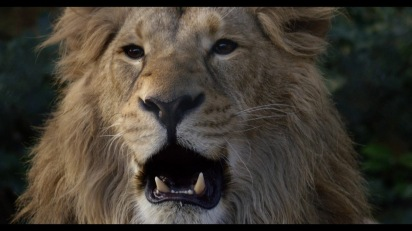 Lion-documentary