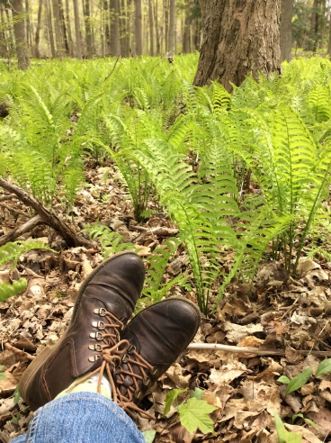 OstrichFern-boots