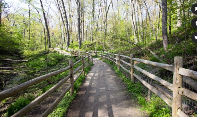 Toronto ravine park