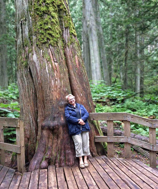 Nina-giant cedar03 copy