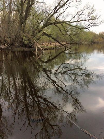 Eramosa River 2